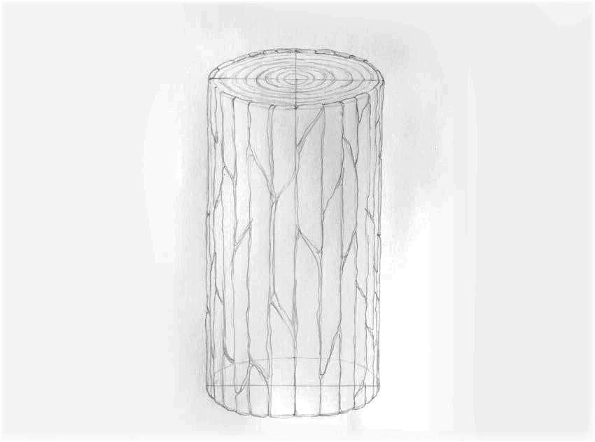 como desenhar casca de árvore