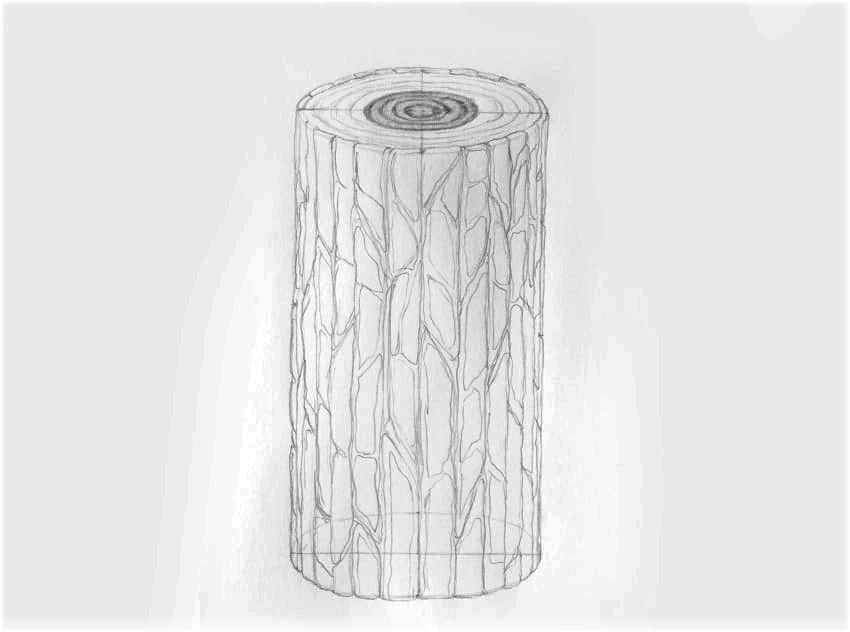 como desenhar tronco de madeira