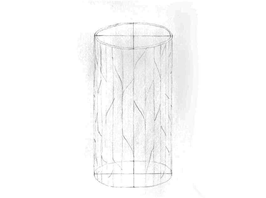 como desenhar tronco