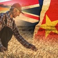 US a big winner of China-Australia trade war