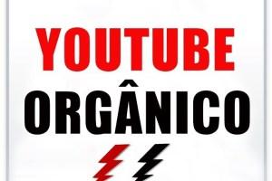Treinamento Youtube Orgâncio Funciona?