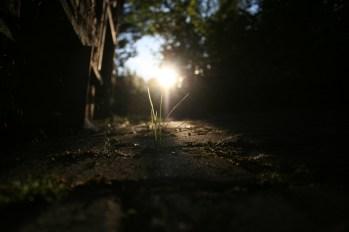 Auch hier: Licht.