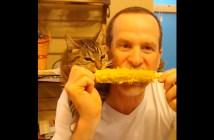 飼い主さんと一緒にトウモロコシを食べる猫