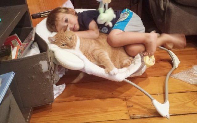 猫といっしょの男の子