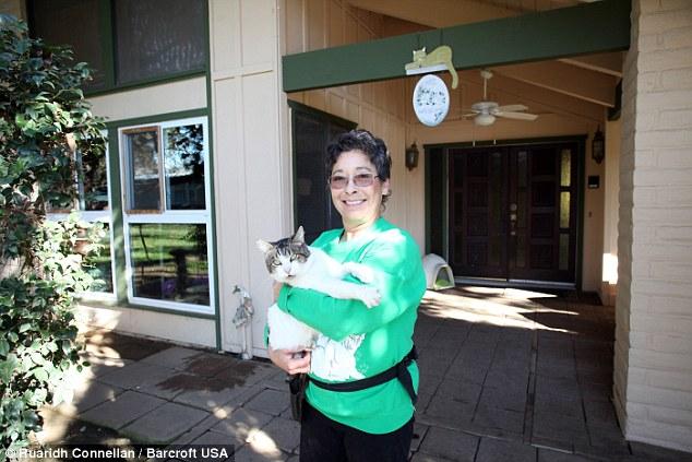 レイニアさんと猫