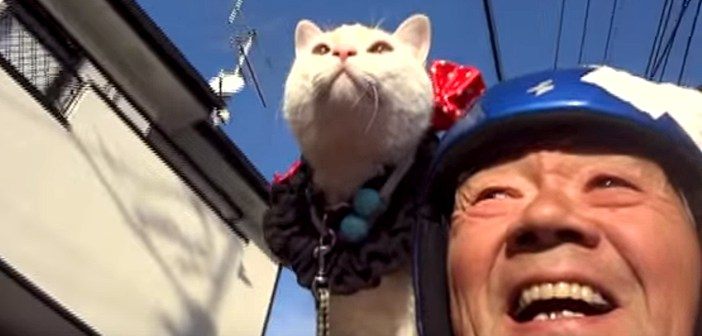 仲良しなおじいちゃんと猫