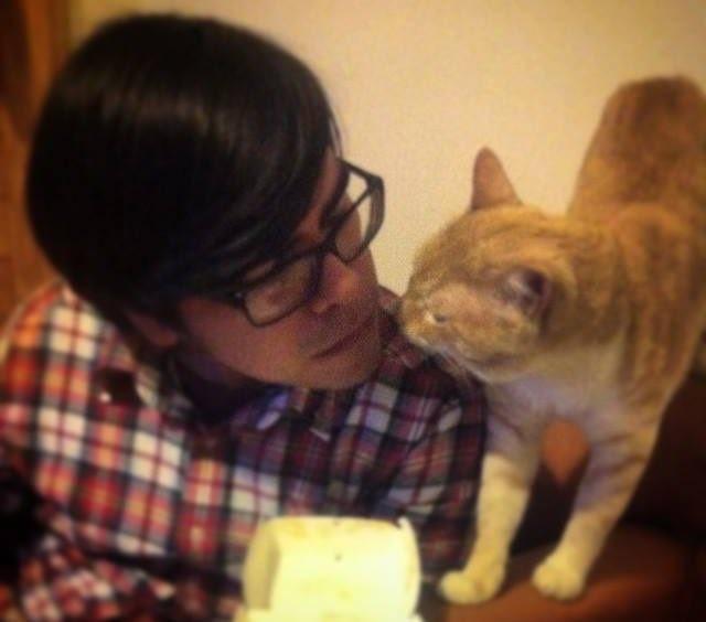 楽しそうな猫