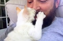 保護主さんにキスする猫
