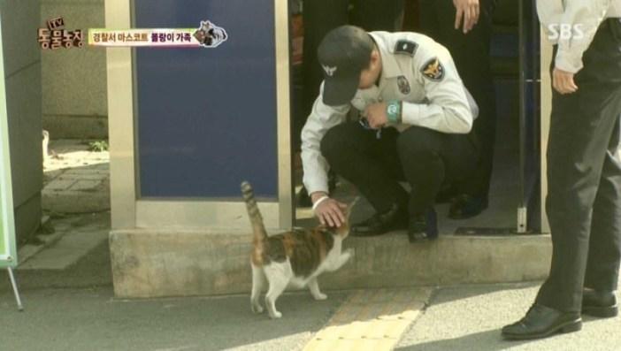 お巡りさんと仲良しな猫