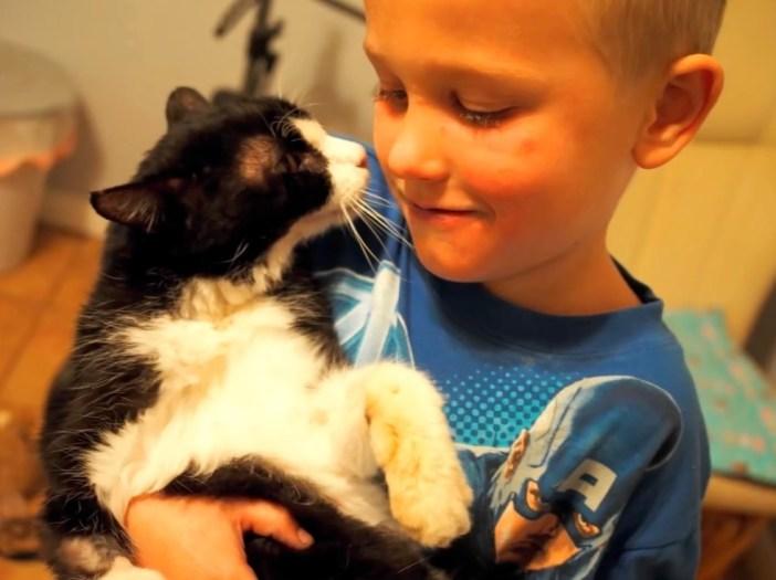 男の子と猫