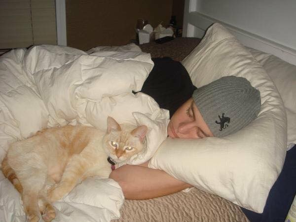 一緒に眠る猫と飼い主さん