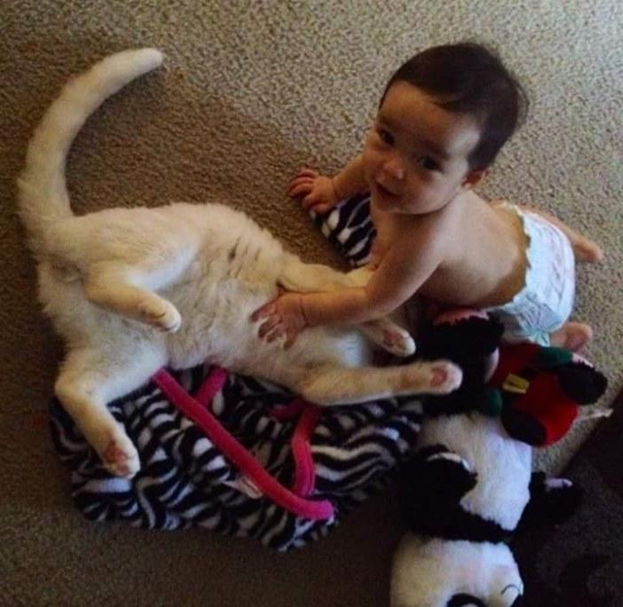 楽しそうな赤ちゃんと猫