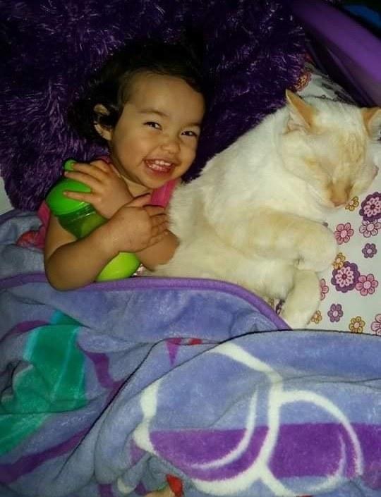 一緒の子供と猫