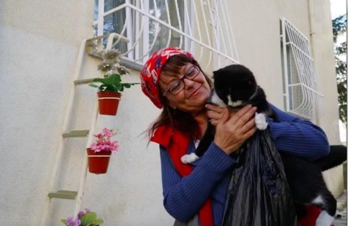 女性にハグされる猫