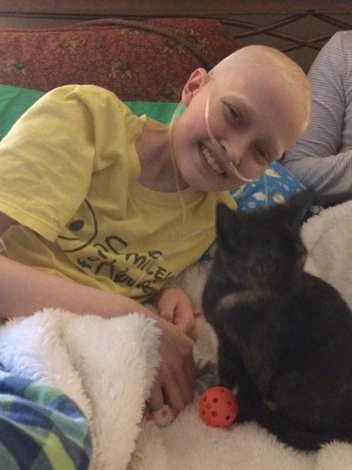 ガンの少女と猫