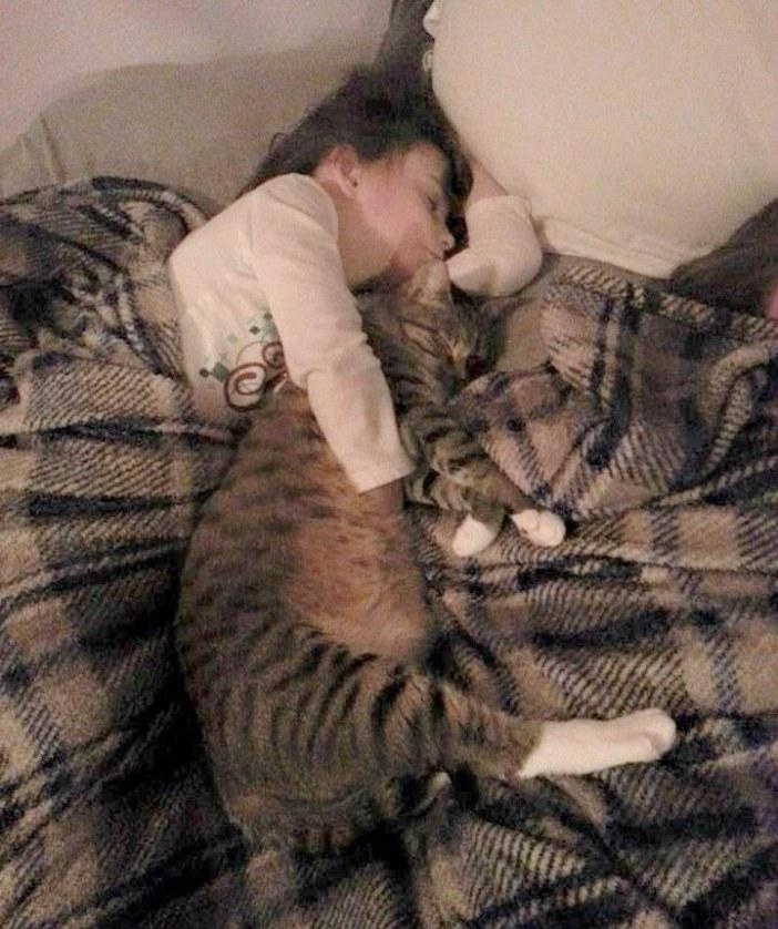 いつも一緒の女の子と猫