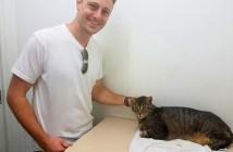 猫と再会した飼い主さん