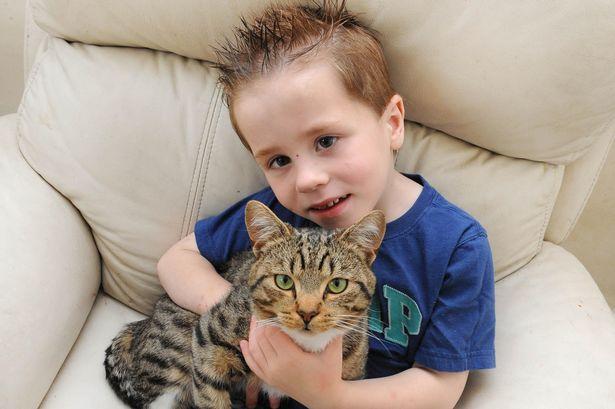 いつも一緒の男の子と猫