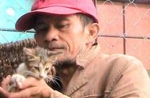 猫を助ける男性