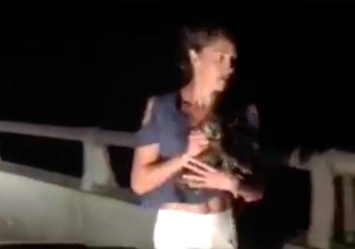 子猫を保護した女性