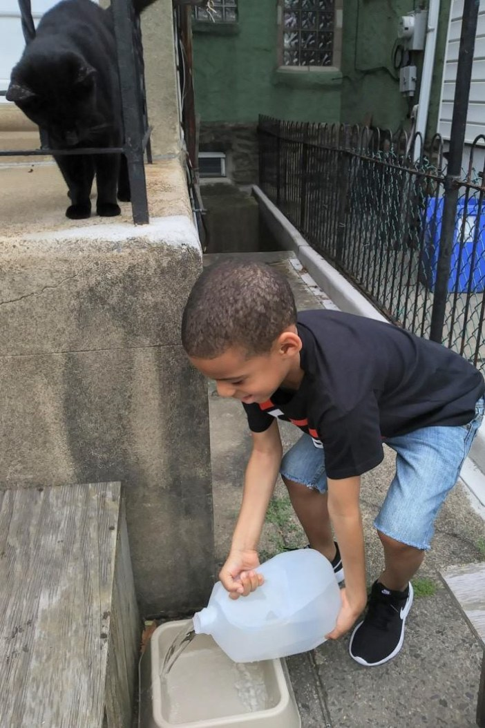 水をあげる少年