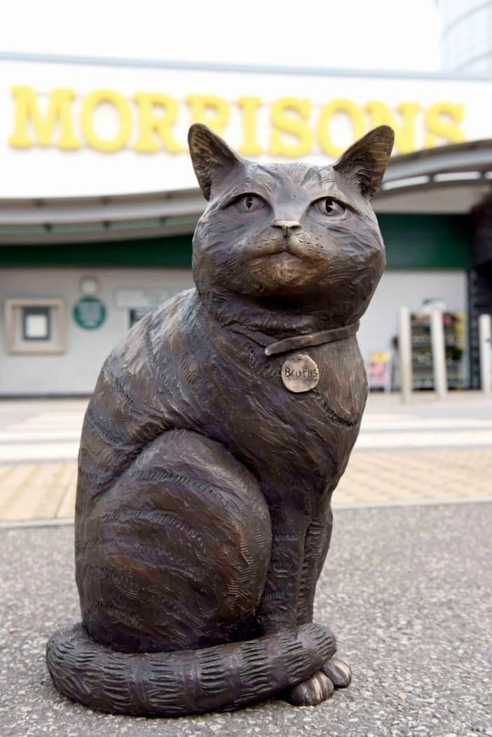 完成した猫の銅像