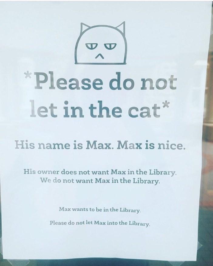 猫の張り紙