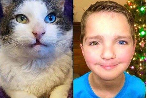 似ている男の子と猫