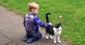 猫と友達になった男の子
