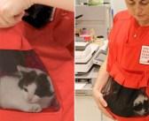 子猫専用のポケットがついた素敵なベスト。保護子猫を人間に慣れさせ、里親さんを早く見つける手助けに (*´ω`*)