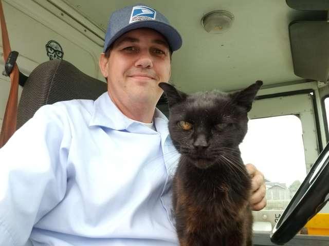 郵便配達員と猫