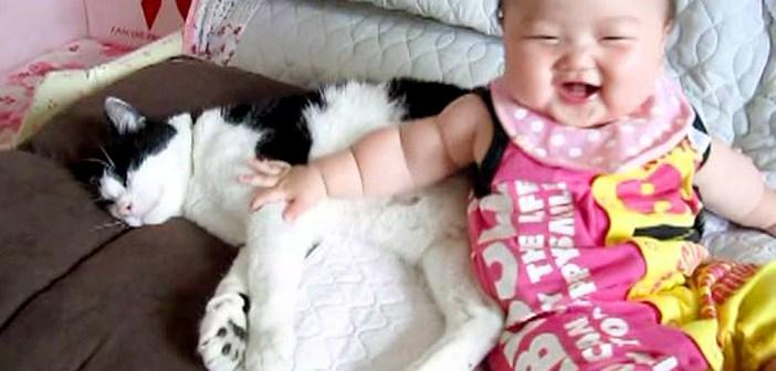 赤ちゃんの子守りをする優しい猫さん。どんなに赤ちゃんにもみくちゃにされても、決してそばから離れません ( *´艸`)♡