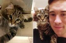 子猫と里親さん