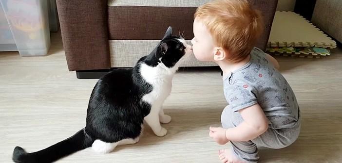 出会ってすぐに最高の家族になった赤ちゃんと猫。ふたりの幸せいっぱいの日常の様子に自然と心が癒される (*´ω`*)♡
