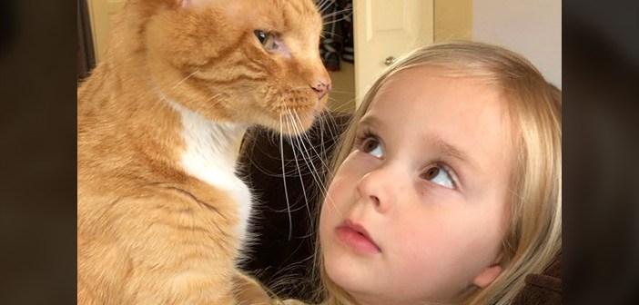 目の前の猫