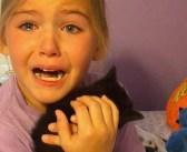 お別れした愛猫とそっくりの子猫に出会った女の子。嬉しさのあまり感情を爆発させる姿に胸が熱くなる