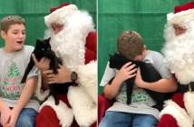 サンタさんから猫のプレゼント