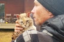 山火事から助け出された猫