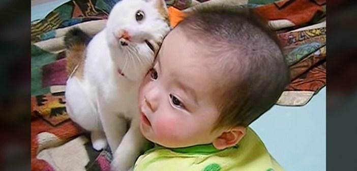 赤ちゃんと猫さん