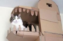 ドラゴンの砦と猫
