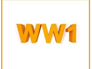 56 WW1 Begrippen PV tt, PV vt en VD