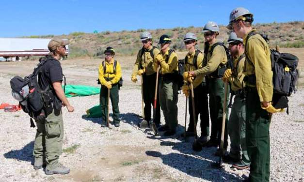 BLM Recruiting Summer Wildland Firefighters and Camp Crew Workers