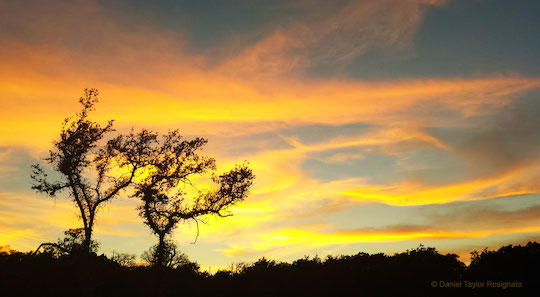Daniel Taylor Resignato Texas skyline sunset