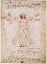 Лондон увидит «Анатомию» Леонардо