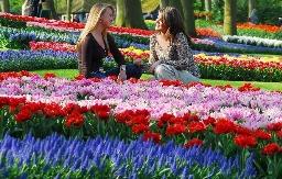 В Нижнем Новгороде будет своя «маленькая Голландия»
