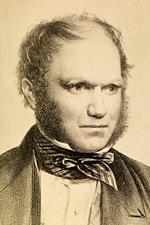 Личная переписка Чарльза Дарвина доступна в цифровом виде