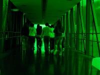 Жизнь под стеклом, зеленые прогулки по Будапешту и зоопарк в Париже ждут участников Всемирной недели зеленого строительства