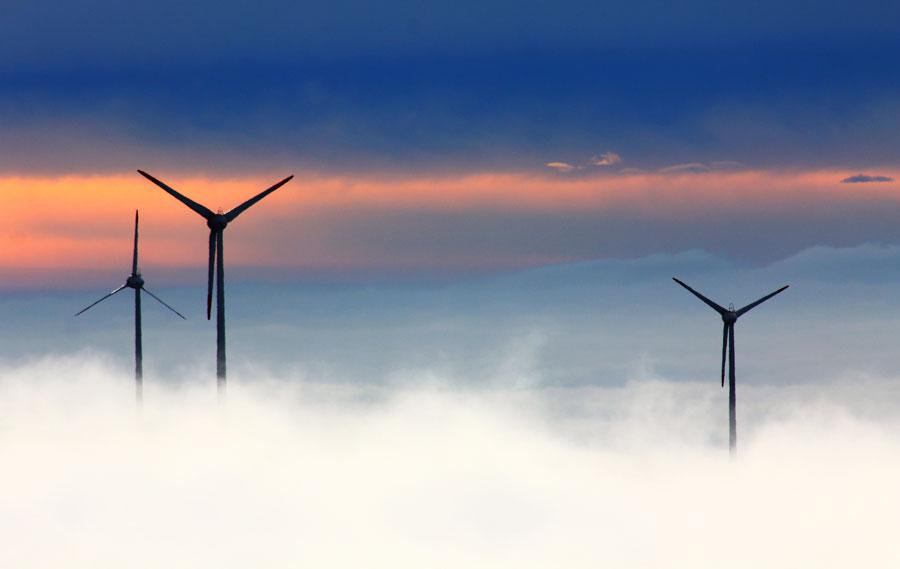 62 турбины: во Франции одобрен проект самой большой в стране морской ветряной электростанции