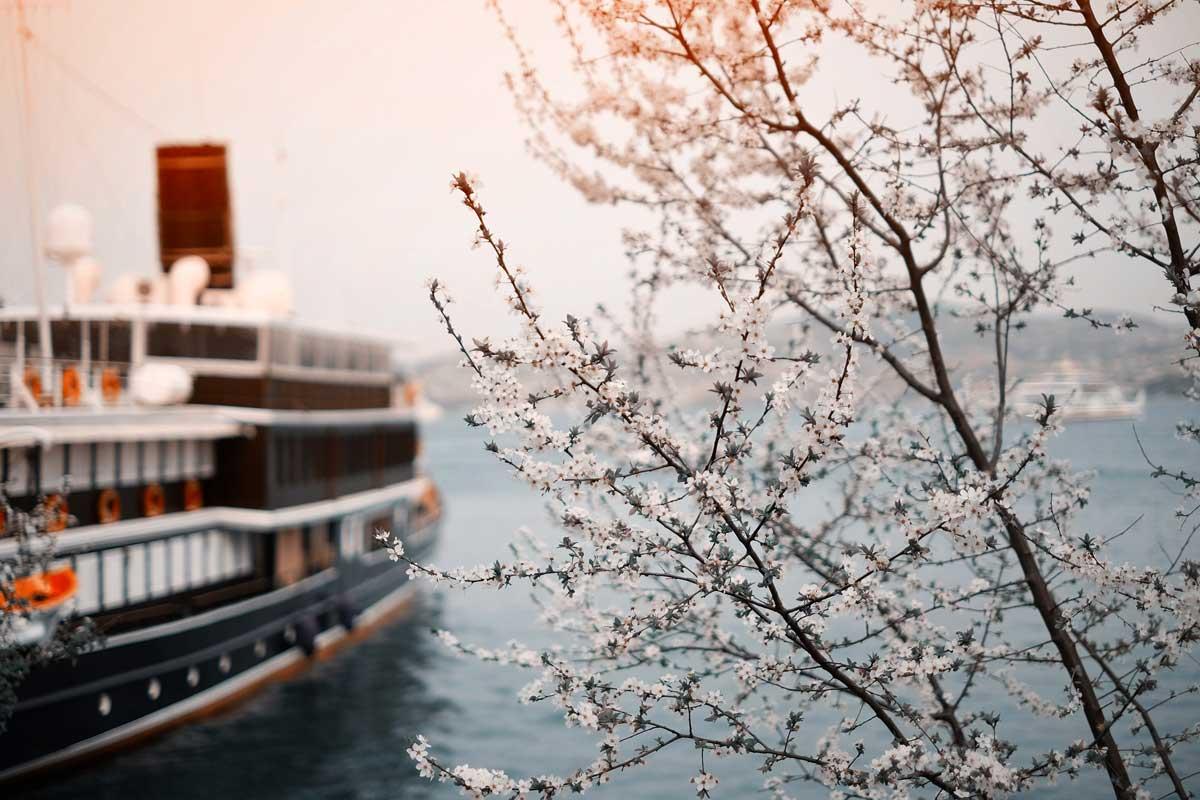 С 2025 года все новые корабли в Великобритании будут с нулевым уровнем выбросов