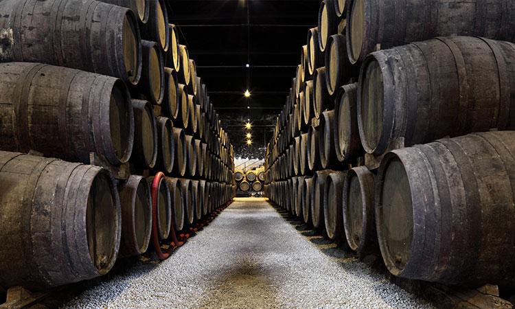 adega de vinho bebidas tipicas de portugal